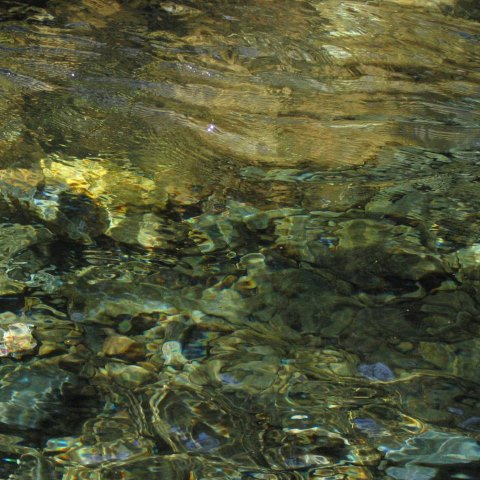 p3117: abstract photo (stones in the bed of a clear stream) by Ewart Shaw